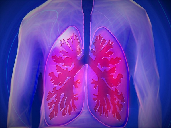 Study reveals nitrate supplementation could help in breathing,lung clearance in the elderly