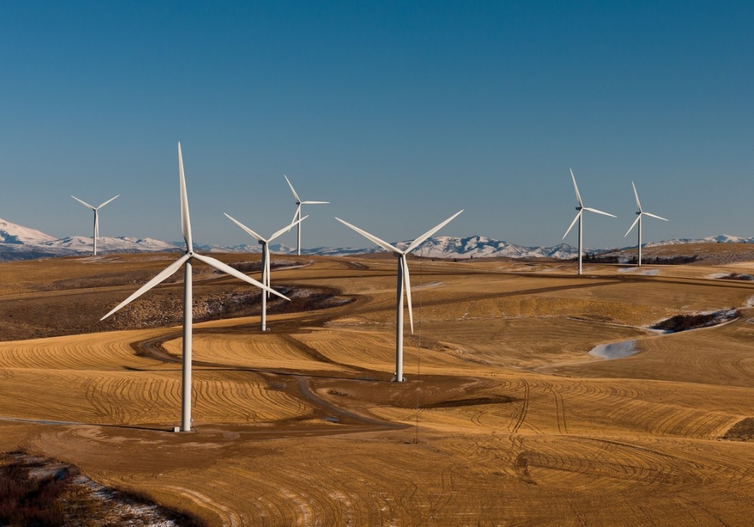 World Bank's climate fund initiatives deliver scalable environmental action