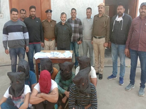 Haryana Police busts two online cyber fraud gangs in Sirsa, 11 arrested