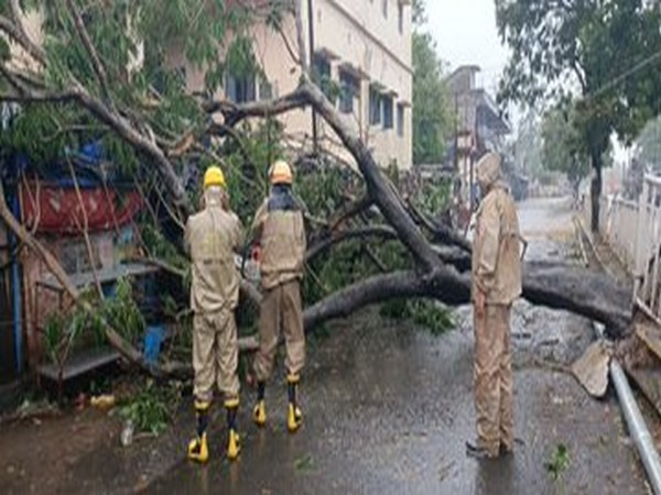 Cyclone Amphan: Uprooted trees block roads in Odisha's Bhadrak district