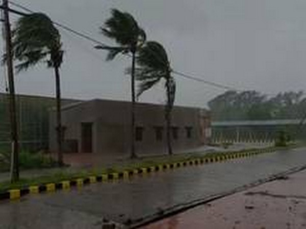 Cyclone Amphan uproots trees, flattens houses in Odisha