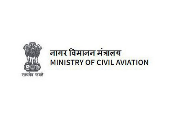 Civil Aviation Ministry forms three advisory groups