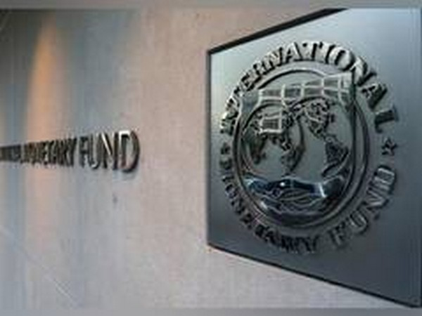 IMF steering committee to consider doubling emergency pandemic aid