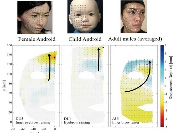Researchers compare expressions of android and human faces