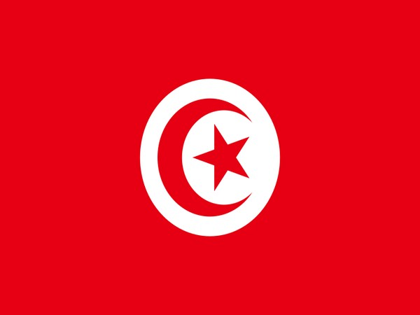 Tunisia's labour union seeks elections before constitution change