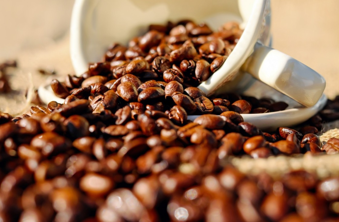 CORRECTED-Premium prices attract small farmers back to coffee growing in Zimbabwe