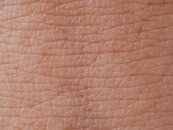 Enzymes protect skin by ignoring microbes, viruses