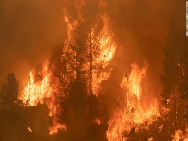 Wildfires are becoming a vicious problem across the globe