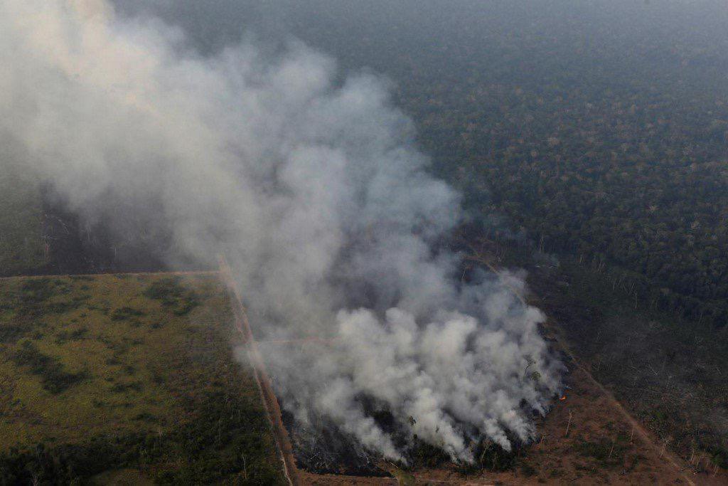 PG&E announces USD 11 bn settlement in deadly California fires