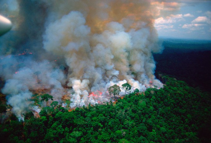 UPDATE 3-Warplanes dump water on Amazon as Brazil military begins fighting fires