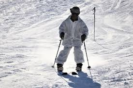 Nordic skiing-Norway's Holund, Lundby claim gold