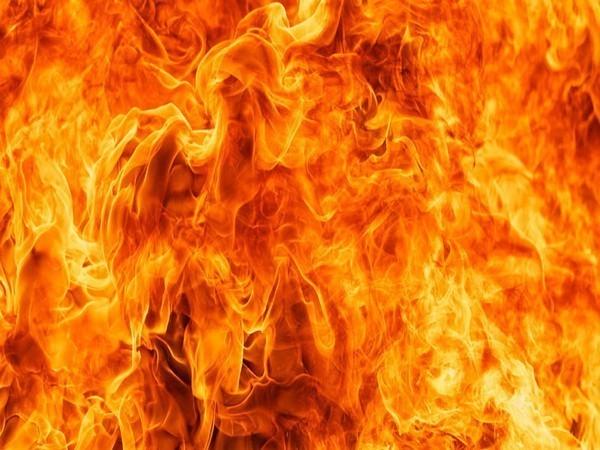 Fire breaks out in Delhi's Paschim Vihar area, 2 injured