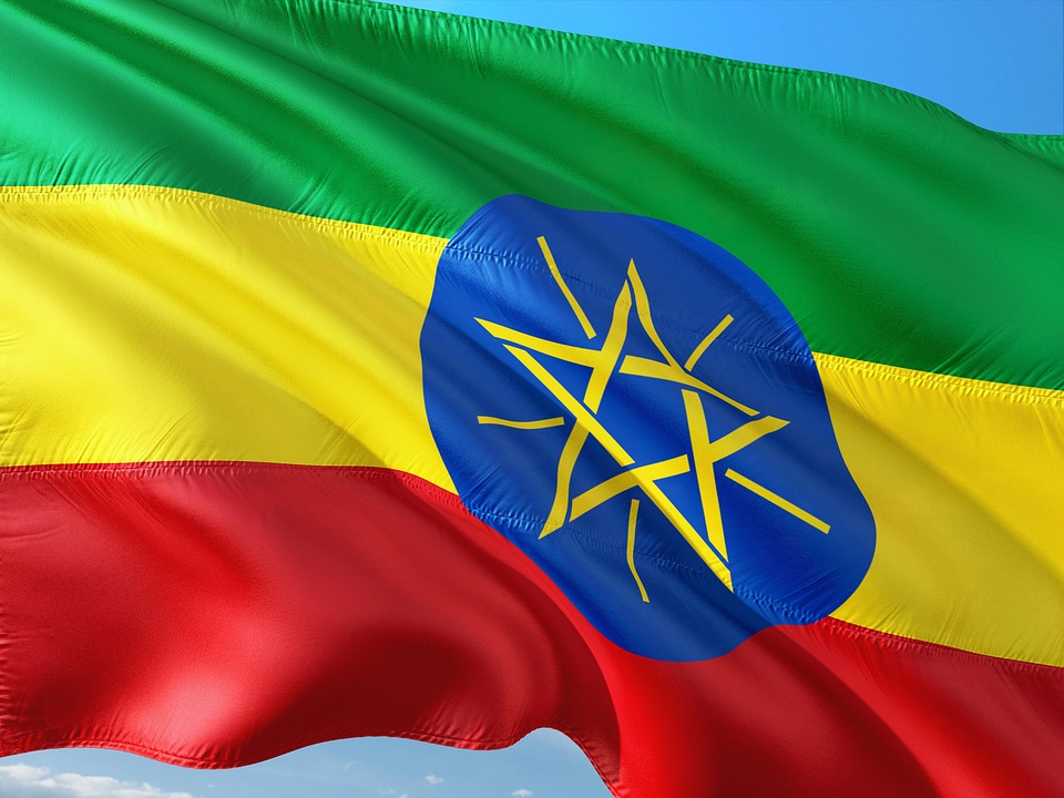 Regional power grab attempt causes rare discord in Ethiopia coalition
