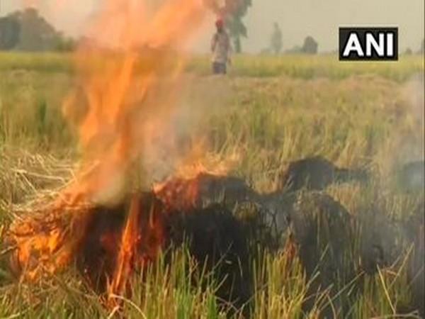 Stubble burning: Action against two revenue officials