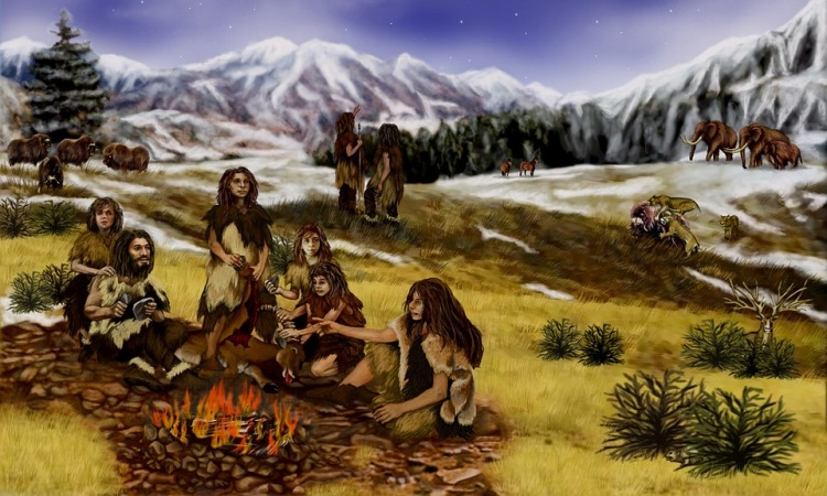 Neanderthals ate mussels, fish, and seals too: Study