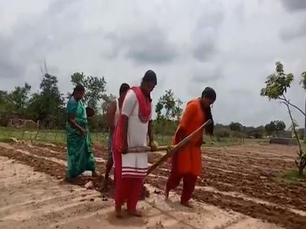 Andhra Pradesh: Girls pull plough to aid father in farming in Chittoor district