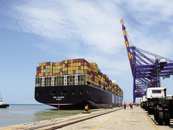 Russia sends second wheat cargo to Saudi Arabia - sources