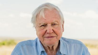 David Attenborough to U.N.: 'Climate change a threat to global security, I don't envy you'