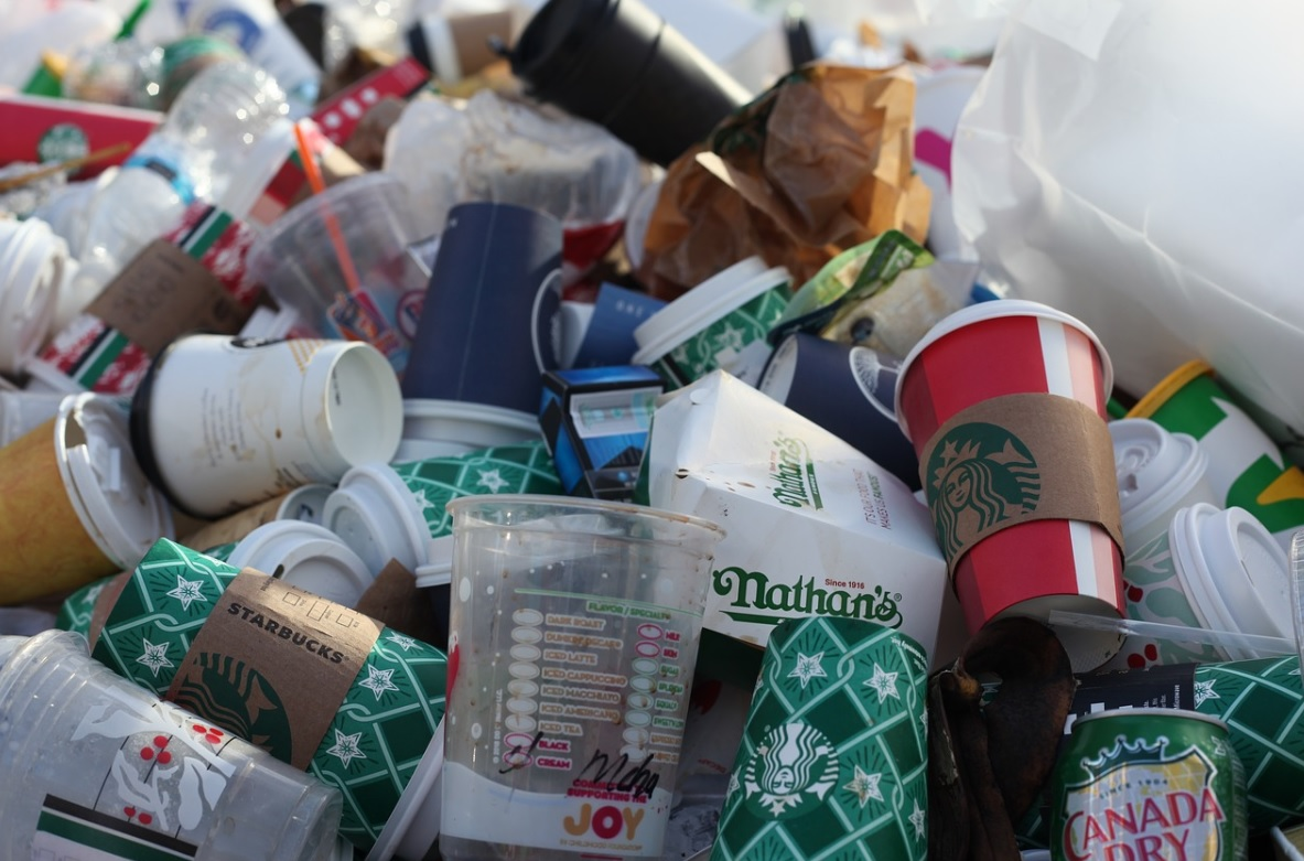 Tiny E.Timor to become world's first plastic-neutral nation