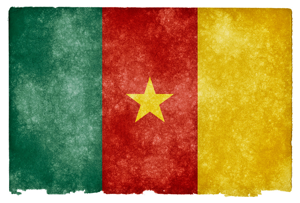 AfDB lends $18.1mn to boost public financial management in Cameroon