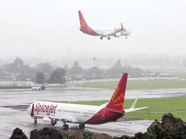 SpiceJet operates repatriation flight from Amsterdam to India with 269 Indians