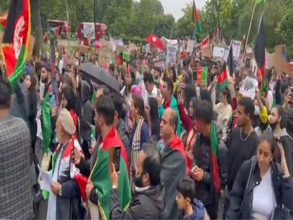 Dozens march for women's rights at Kabul palace
