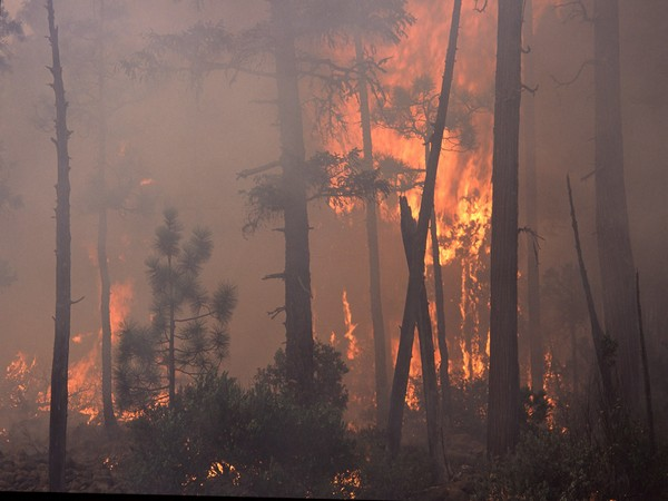 New wildfire in North California forces nearly 50,000 to evacuate