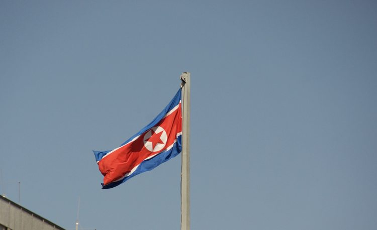 UPDATE 2-North Korean foreign minister replaced - report