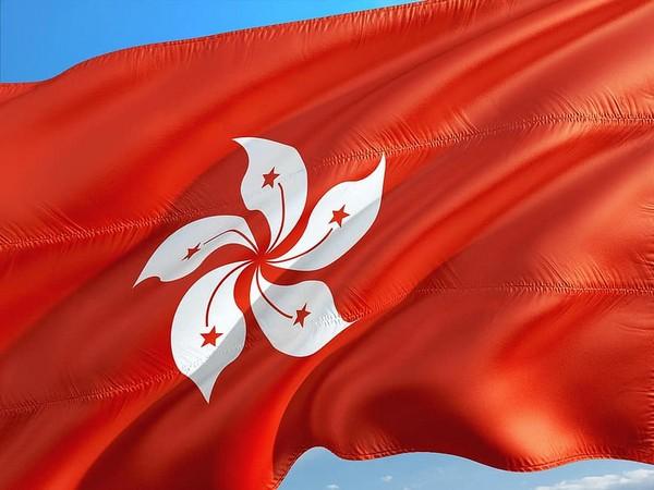 Hong Kong activists plead guilty to joining democracy rally
