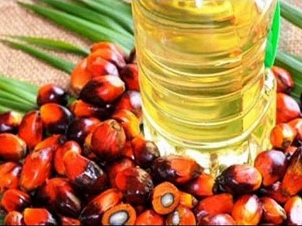 UPDATE 2-Pakistan pledges to buy more Malaysian palm oil to compensate for India's withdrawal