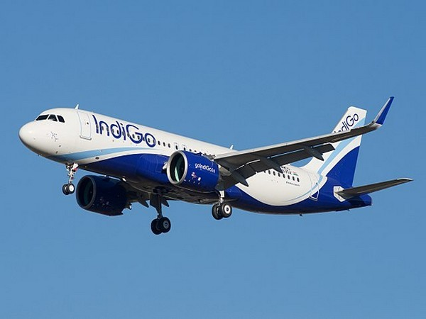 'Golden age' for Indian aviation sector; fundamentals strong: IndiGo chief