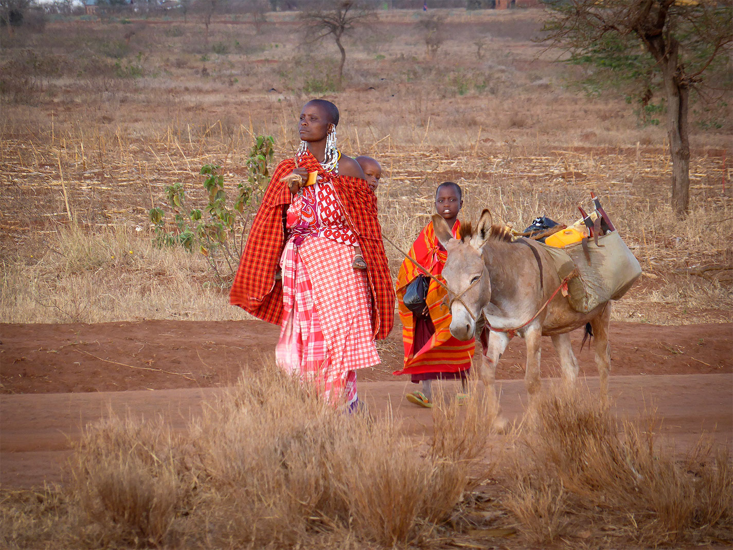 masaai woman and children with donkey