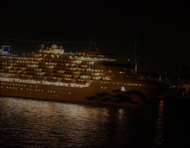 WRAPUP 5-Americans to fly home from coronavirus-hit cruise; China says new cases slow