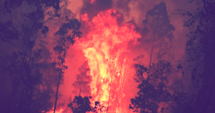 Authorities warn Australian bushfires developing their own weather systems