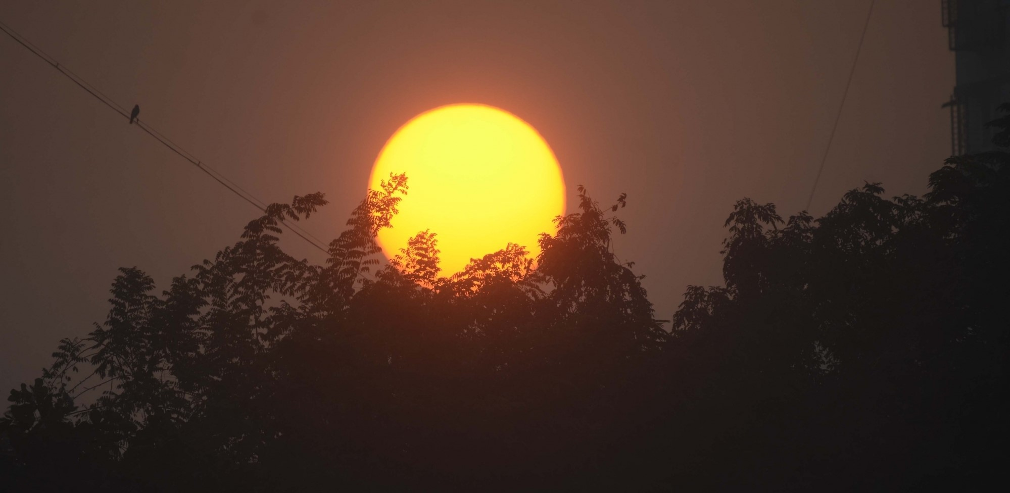 Weather mostly dry in UP; Etawah hottest at 44.8 deg C