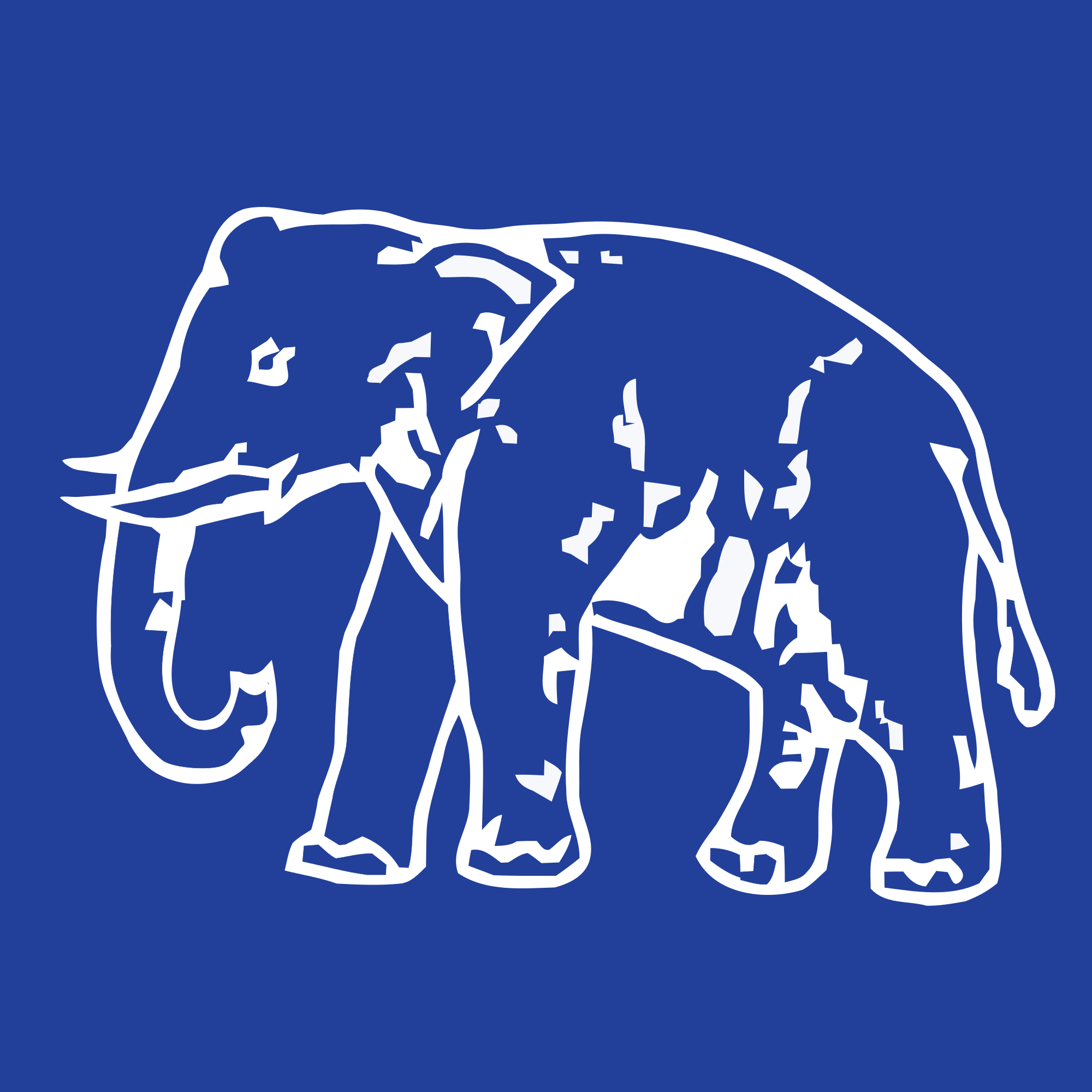 BSP removes Danish Ali as its leader in LS, makes other changes in party