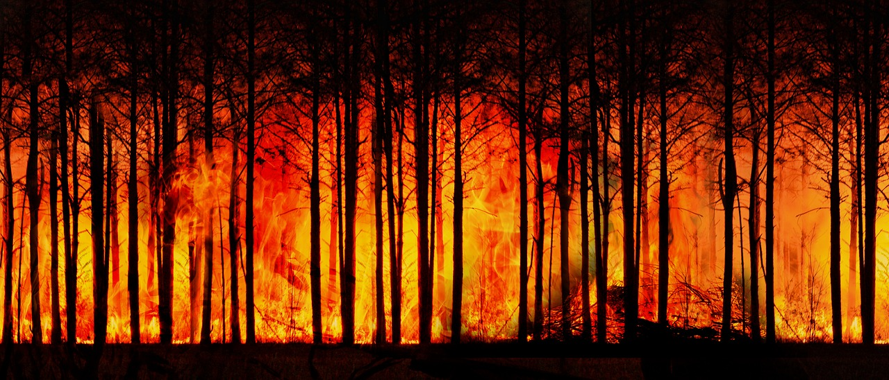 Cape Town wildfire forces evacuation of university students