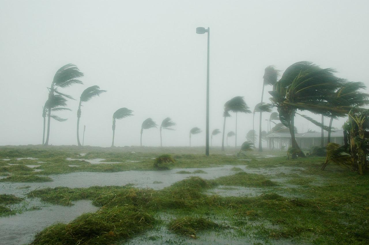 India's Odisha, Andhra Pradesh states brace for cyclonic storm